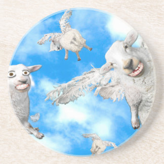 1_FLYING SHEEP COASTER