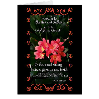 1 Peter 1:3 small card