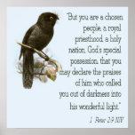 1 Peter 2:9 Christian Scripture Poster Bible Verse