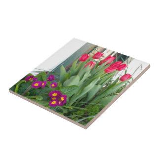 1 Primrose Tulips Tile