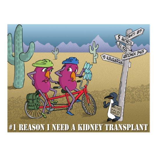 # 1 reason I need a kidney transplant