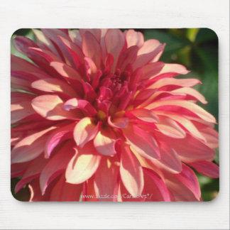1 Starburst Pink Dahlia Mouse Mat