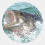 1basss11cp round sticker