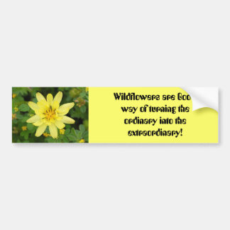 1flowers, Wildflowers are God's way of turning ... Bumper Sticker