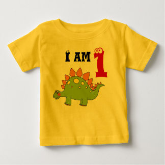1st birthday party gift, dinosaur stegosaurus baby T-Shirt