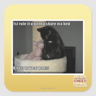 1st rule if u gonna share ma bed square sticker