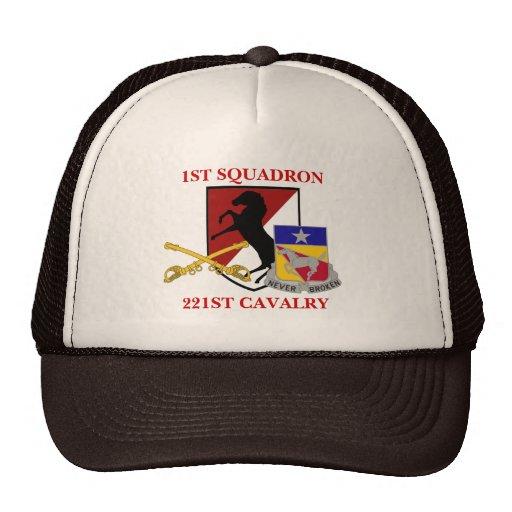 1ST SQUADRON 221ST CAVALRY HAT