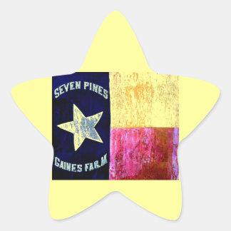 1st Texas Infantry, Hood's Brigade, Lone Star Flag Star Stickers