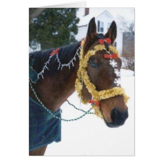 2005 OMRH Christmas Card Photo Third Place Winner