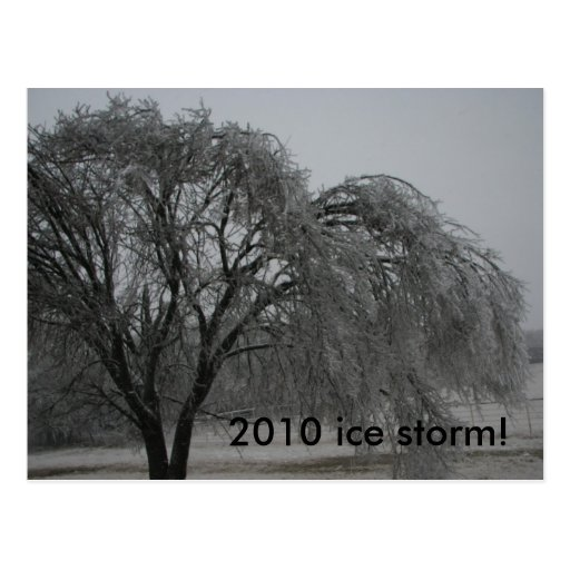 2010 ice storm! postcards
