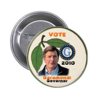 2010 John Garamendi Pin