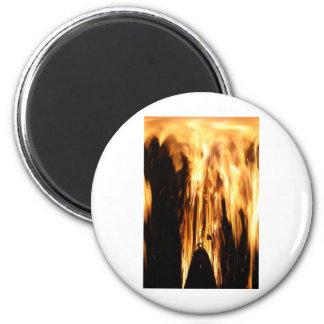 2011_06_04_8563horozontleliquid.jpg 6 cm round magnet