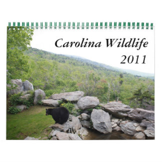 2011 Carolina Wildlife Calendar