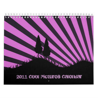 2011 Cool Pictures Calendar