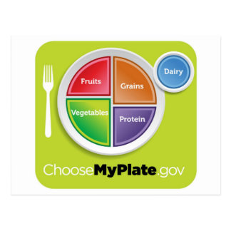 2011 Food Pyramid Choose My Plate postcard