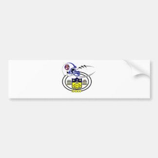 2011 Frost SHIELD Bumper Sticker