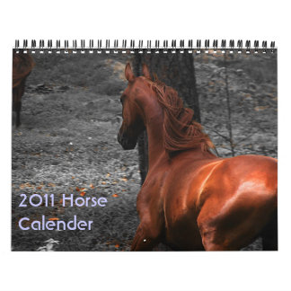 2011 Horse Calender Calendars
