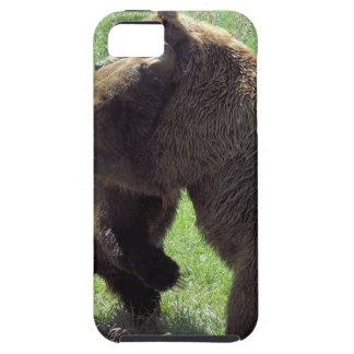 20120728_173a.jpg iPhone 5 case