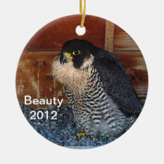 2012 Beauty Ornament