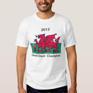 2012 Grand Slam Tees