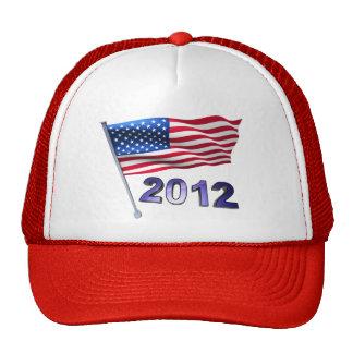 2012 with USA flag Cap