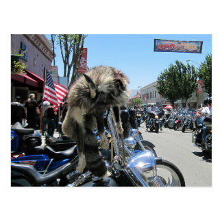 2013 Hollister Motorcycle Rally Postcard