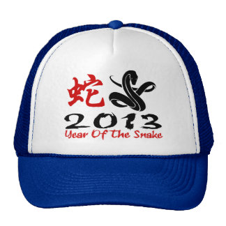 2013 Year of The Snake Mesh Hat