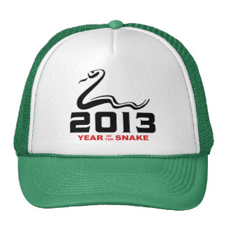 2013 Year of The Snake Mesh Hats