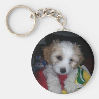2014-07-30 23.50.12.jpg key ring