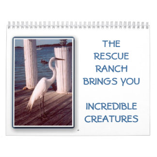 2014 Incredible Creature Calender Calendar