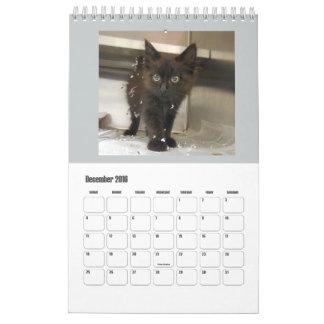 2016 Black Cats Calendars