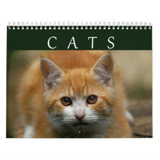 2016 Cat Calendar