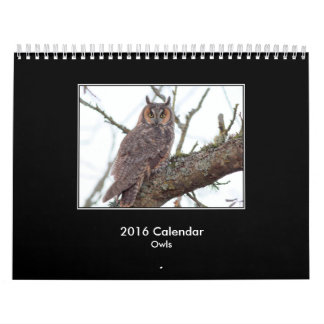 2016 Owl Calendar