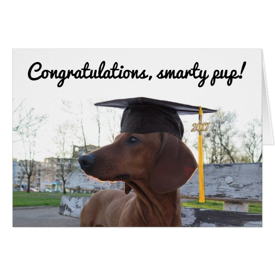 2017 Graduation Cap & Charm Dog Dachshund Smarty
