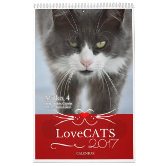 2017 LoveCATS Calendar - First Edition