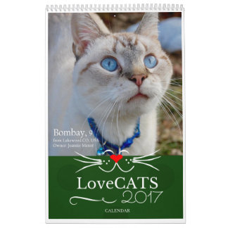 2017 LoveCATS Calendar  'Outdoors' Special Edition
