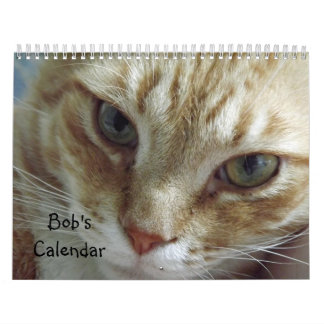 2017 Orange Tabby Cat Calendar