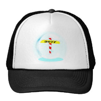 2017 Winter Pole Cap