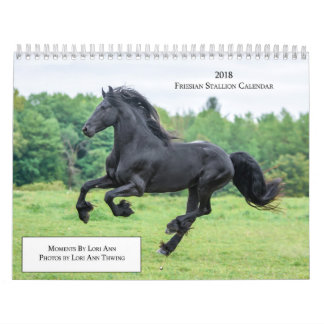 2018 Friesian Stallion Calendar