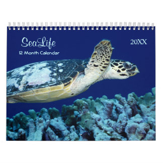 2018 Marine Fish and Sea Life Calendar