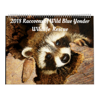 2018 Raccoons of Wild Blue Yonder Wildlife Rescue Calendars