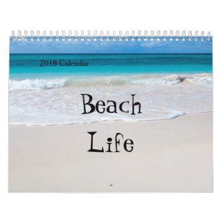 2018 Twelve Month Calendar -Various Beach Scenes