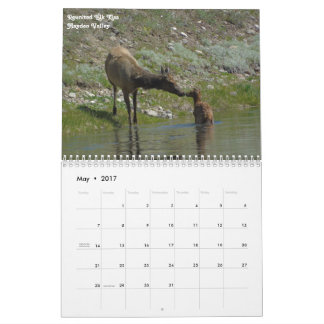2018 Yellowstone National Park Calendar