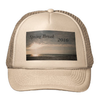 201SPRING BREAK SHAFT OF LIGHT TRUCKER HAT