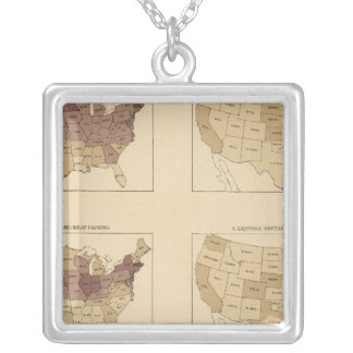 204 Manufactures/sq mile Silver Plated Necklace