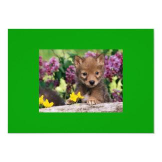 20_baby_animals (15) adorable cute darling pets custom invitation