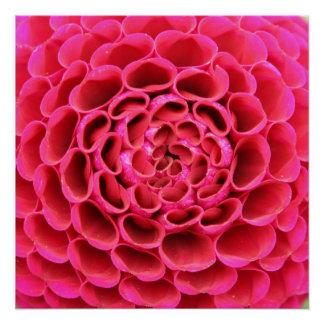 "20""x20"", Poster Paper (Semi-Gloss) Hot Pink Flower"