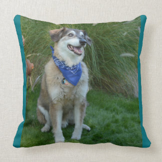 20x20 throw pillow with dogs