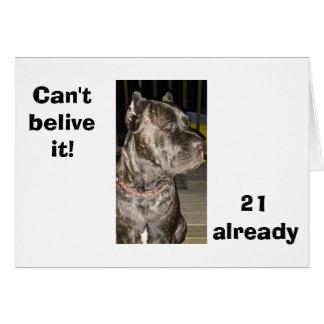 """""""21 ALREADY"""" TIME FLIES WHEN YOU ARE HAVING FUN CARD"""