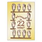22nd birthday, Curious owls card. Card